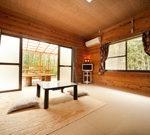 桜草・室内